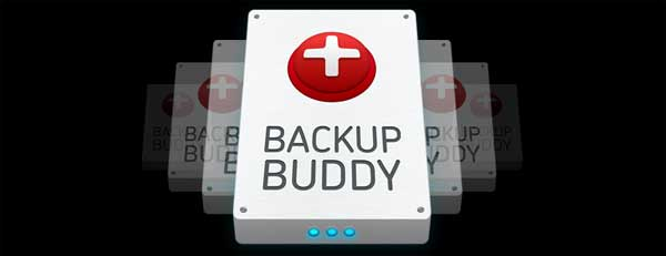 backup buddy review